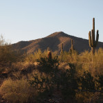 McDowell Mountains Aren't Blast from the Past