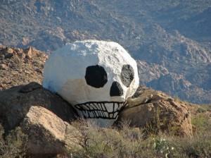 05 skull