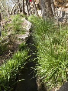 Irrigation ditch at Montezuma's Well