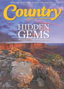 COUNTRY HIDDEN GEMS COVER