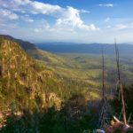 Arizona's Bigfoot Terrorizes Mogollon Rim