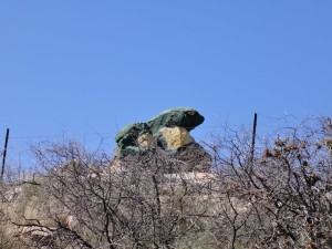 Boulder painted as a frog near Cherry. Courtesy of Mary-Ann Johnson.